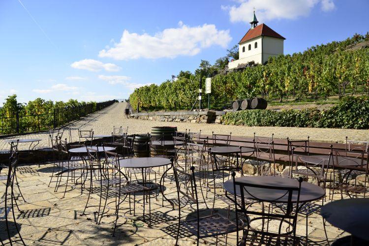 Venkovní zahrádka vinárny