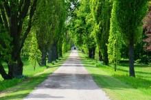 K zámku patří také rozlehlý anglický park