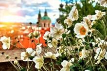 Krásy Prahy čekají na objevení